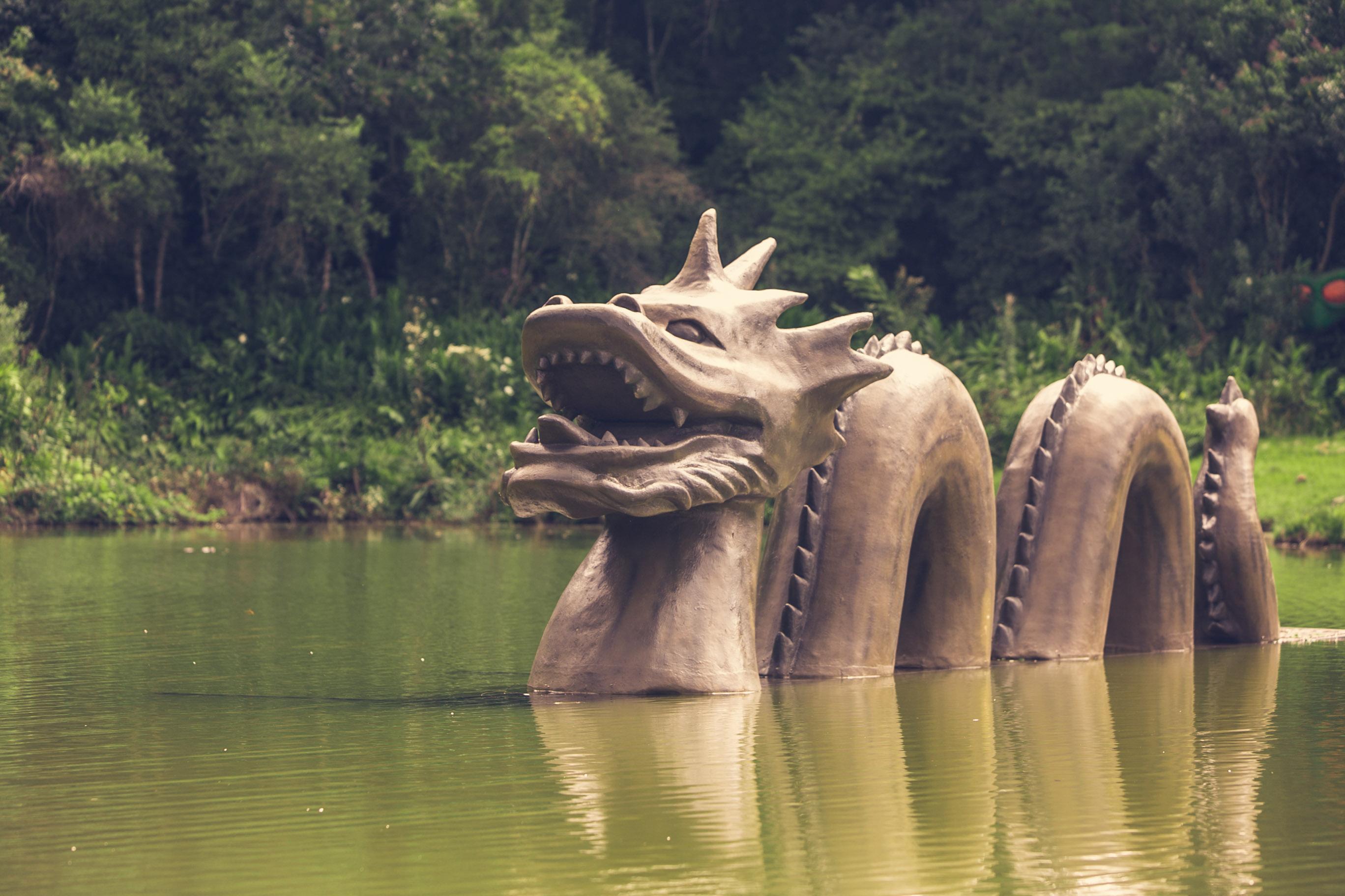 Warung Day Festival, um sonho real